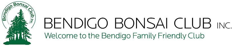 Bendigo Bonsai Club